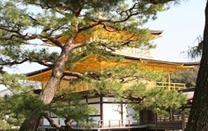fixtravel פיקסטראבל תמונות יפן