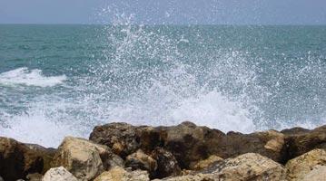 ישראל תל אביב נמל האנגר בני הדייג
